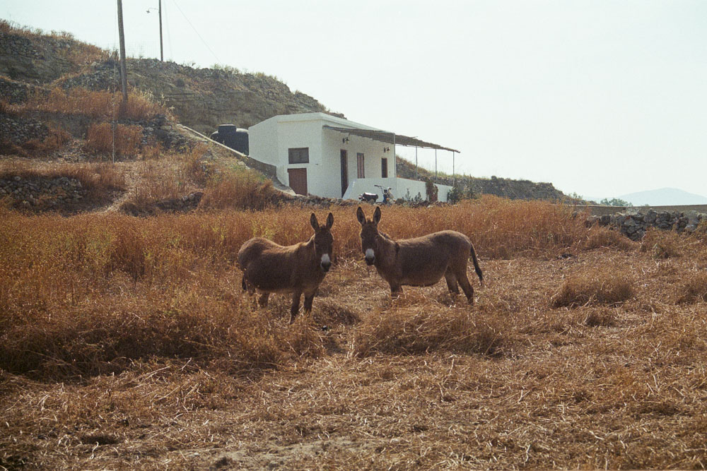 A photograph by Ali Bosworth in the selection Milos